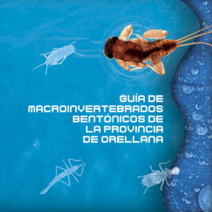 """Presentem la """"Guía de Macroinvertebrados Bentónicos de la provincia de Orellana, Equador"""""""